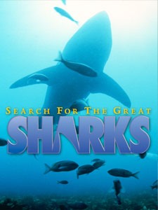 Search for the Greatest Sharks